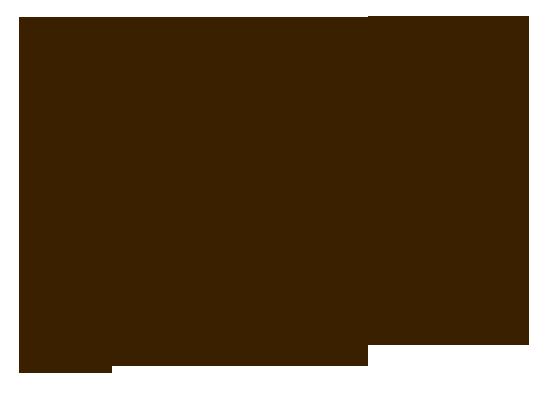 Шагин Антон - биография