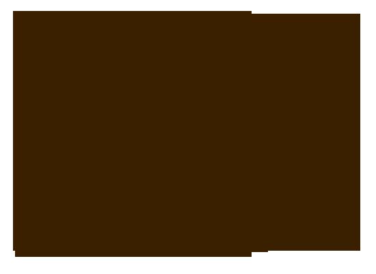 Биография Антона Шагина - цитата о жизни